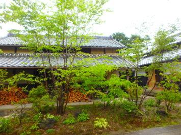 静岡県袋井市K様邸の植栽工事と造園外構工事の写真です。日本庭園の写真です。