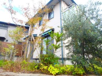 横須賀N様邸の植栽工事と造園外構工事の写真です。