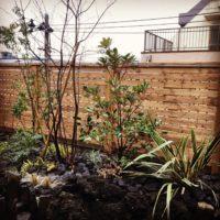 いろは苑が横浜で作った溶岩石の花壇とウッドフェンスのあるモダンな屋上庭園
