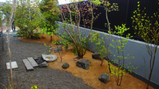 いろは苑が袋井市で造園したバードバスのある新緑の美しい雑木の庭