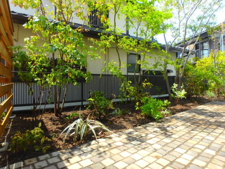横須賀市にあるいろは苑が横浜市都筑区で作ったファミリーガーデンでピンコロのテラスや食べられる植栽が多くある庭。