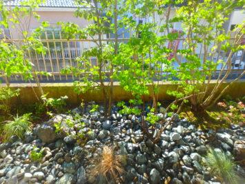 横須賀の造園屋のいろは苑が横浜市保土ヶ谷区で作った早期のあるアプローチと、シンプルモダンなバードバスのある主庭にリガーデン。